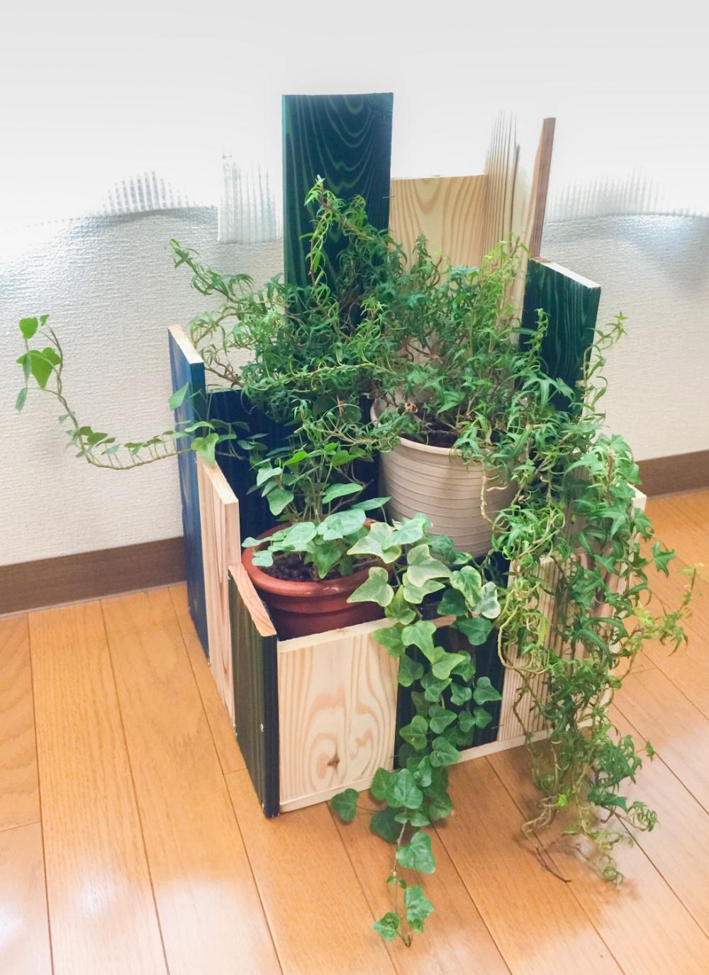 Wooden pot cover